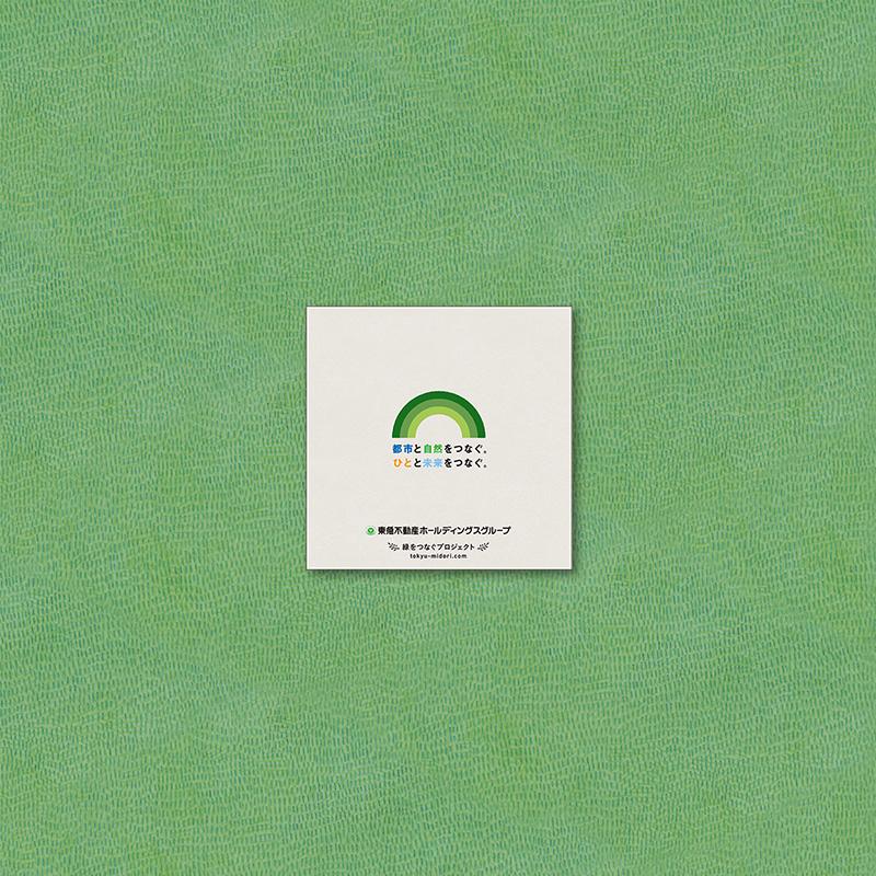 緑をつなぐプロジェクト 展開6/6 裏表紙