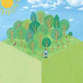 緑をつなぐプロジェクト 育てる森