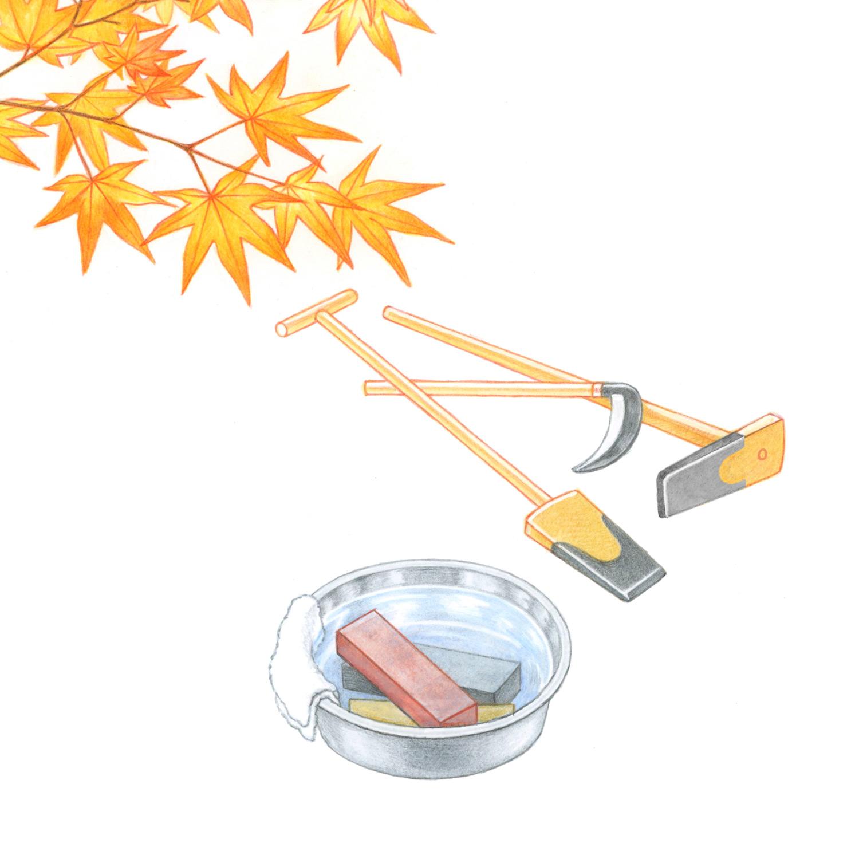 暮らしを楽しむ二十四節気手帖11月カレンダー「紅葉・包丁とぎ」