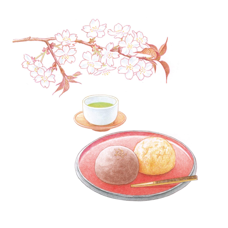 暮らしを楽しむ二十四節気手帖3月カレンダー「山桜とぼた餅」