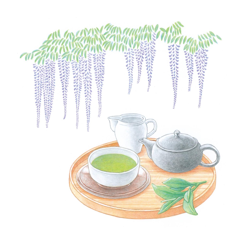 暮らしを楽しむ二十四節気手帖5月カレンダー「藤・お茶」