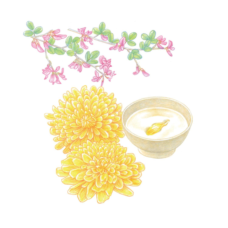 暮らしを楽しむ二十四節気手帖9月カレンダー「萩と菊酒」