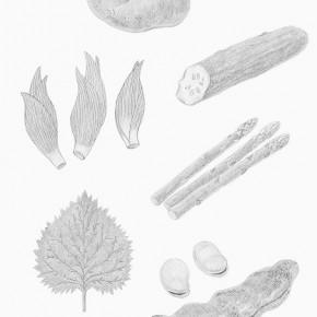 白黒カット 野菜3
